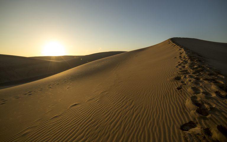 Desert Sunlight Sunset 768x480