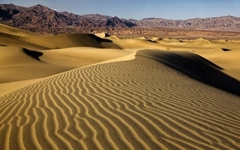 Desert dune 768x480