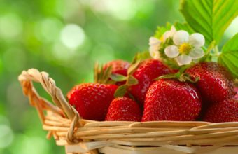 Fruit Strawberry Food Strawberries Wallpaper 2520x1673 340x220
