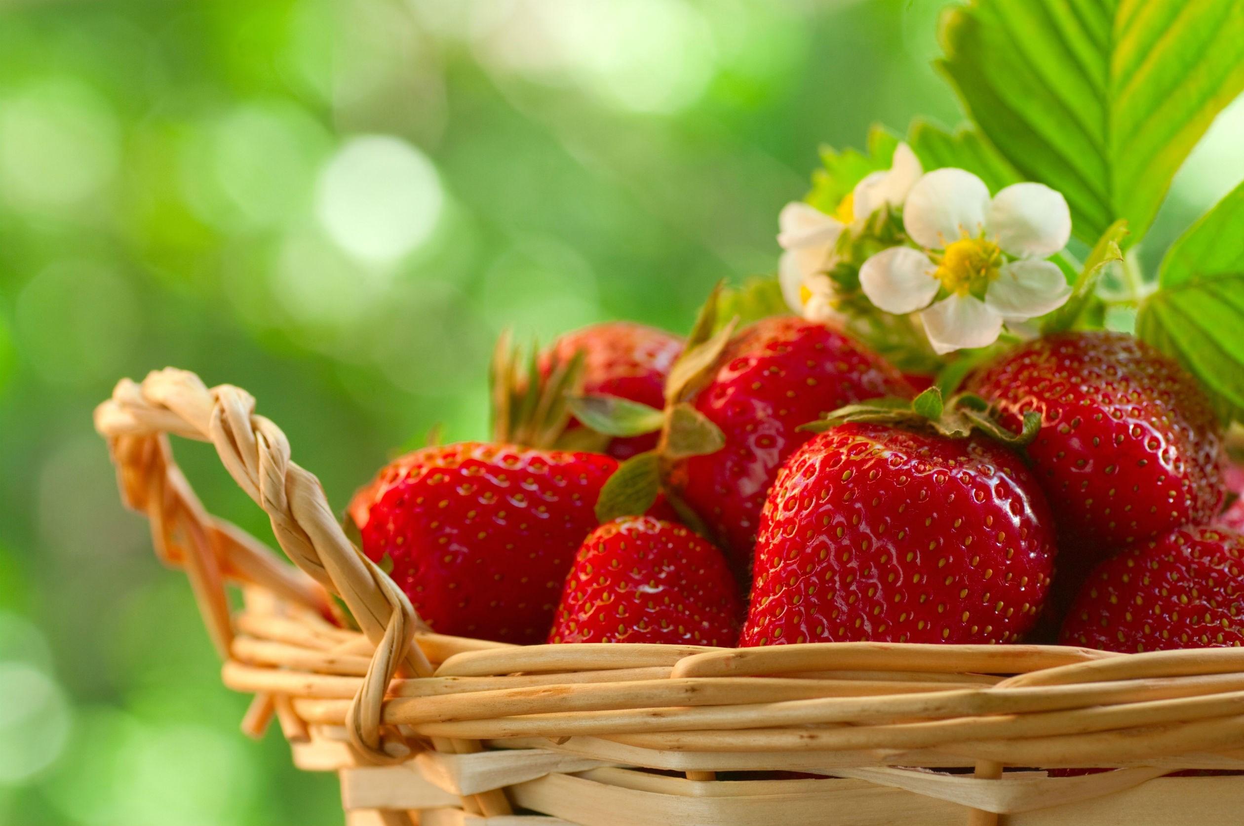 Fruit Strawberry Food Strawberries Wallpaper 2520x1673