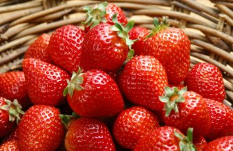 Fruit Strawberry Food Wallpaper 1920x1200 340x220