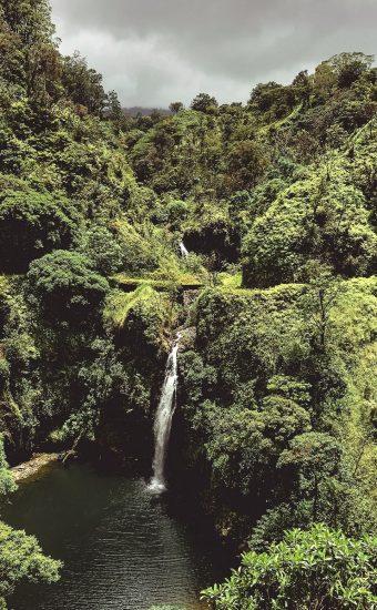 Jungle Beauty Waterfall Wallpaper 340x550