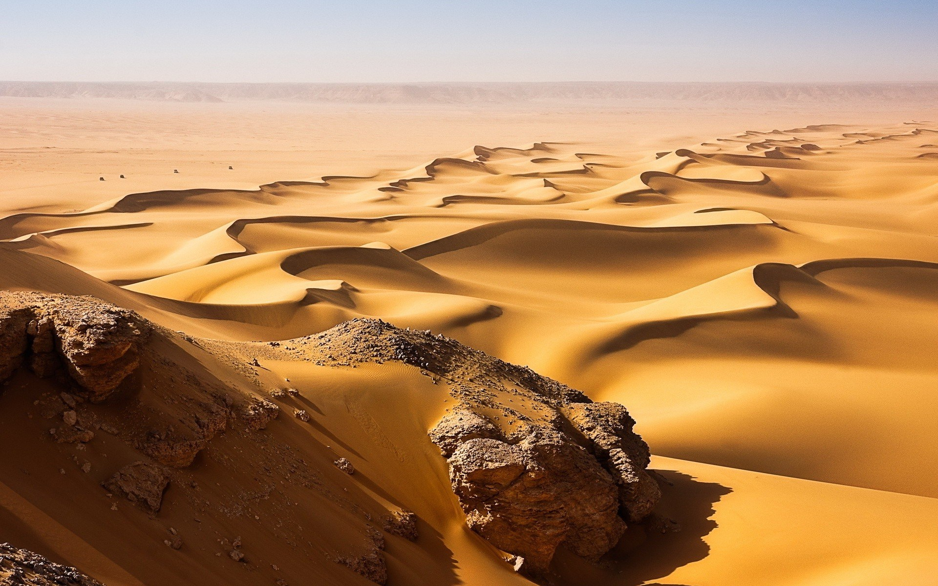 A General Profile of the Sahara Desert  ThoughtCo