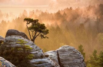 Nature Night Fog Light Wood Rocks Wallpaper 1920x1280 340x220