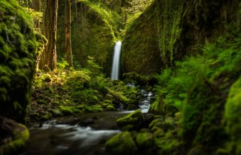 Oregon Waterfall Forest River Mood Wallpaper 2048x1325 340x220