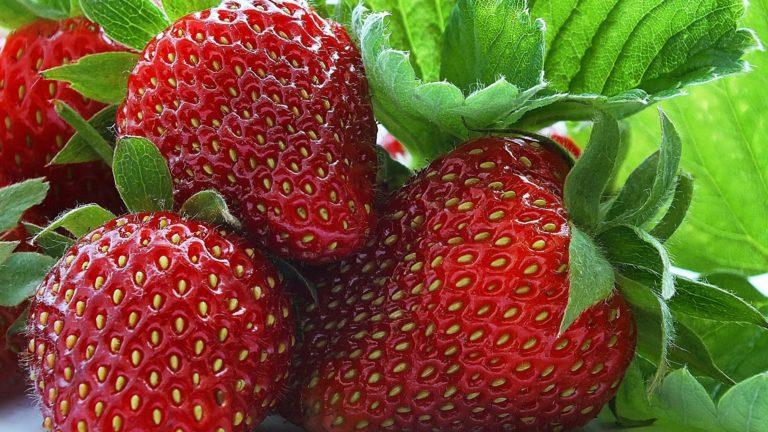 Strawberry Berry Sweet Wallpaper 1920x1080 768x432