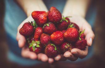 Strawberry Wallpaper 24 4928x3264 340x220