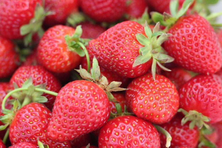 Strawberry Wallpaper 28 5184x3456 768x512