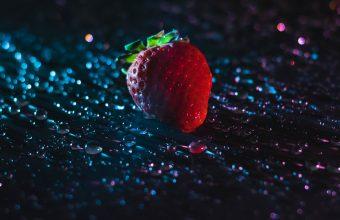 Strawberry Wallpaper 42 1920x1080 340x220