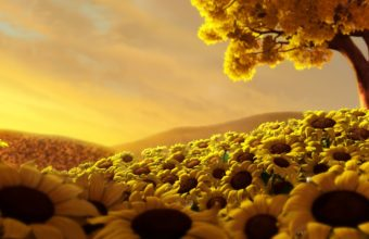 Sun Flower World HD Wallpaper 1920x1080 340x220