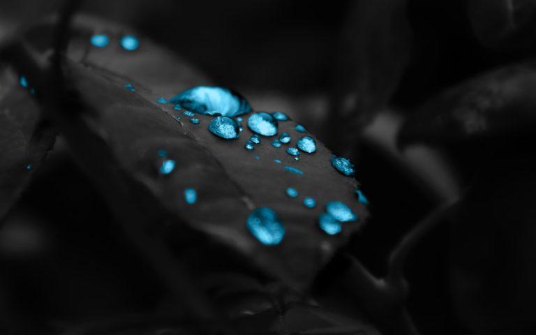 Water Drops Wallpaper 2560x1600 768x480