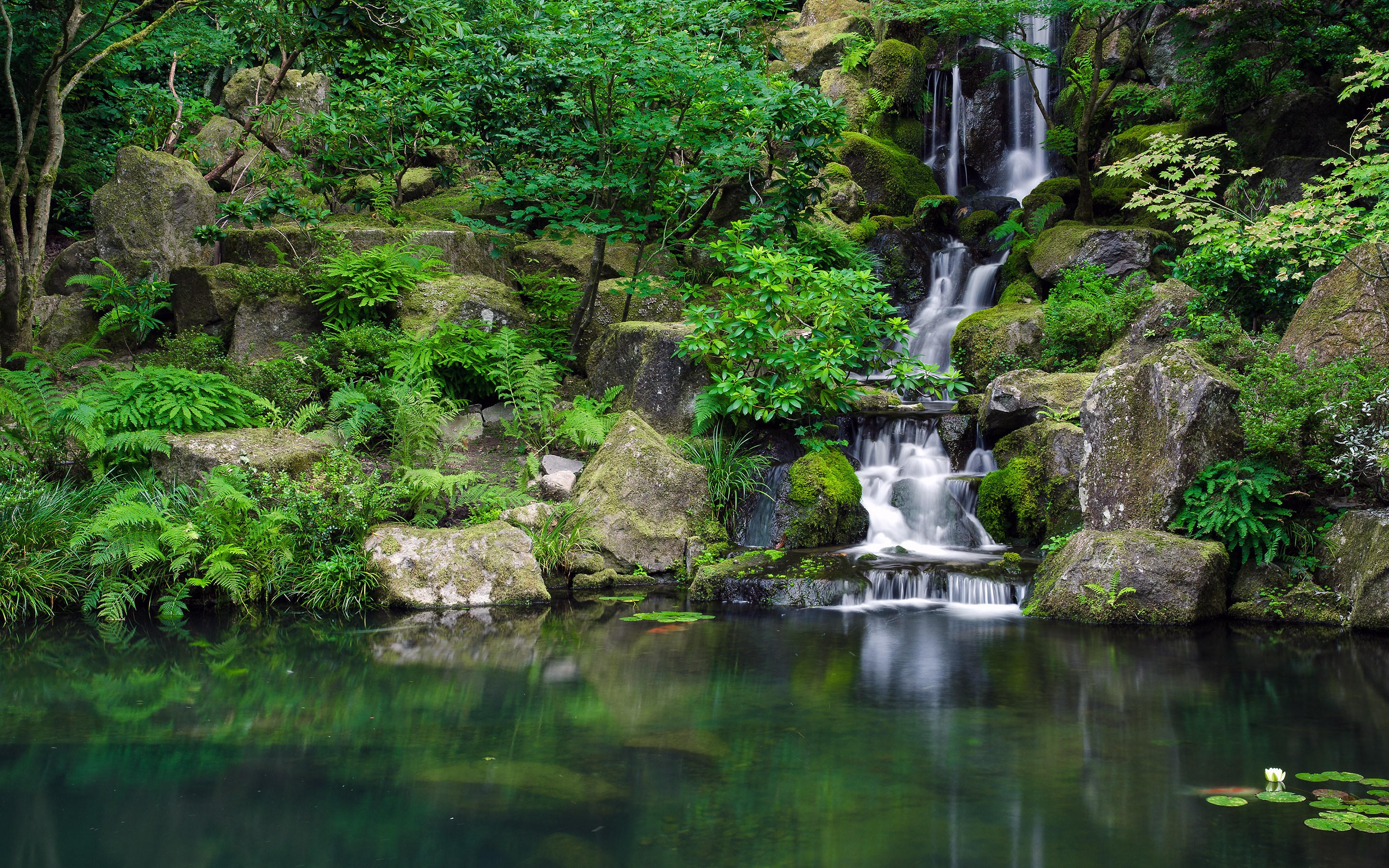 Waterfall Jungle Forest Pond Trees Wallpaper 2880x1800