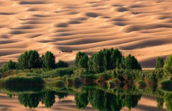 desert Libya lake sand dunes trees 340x220