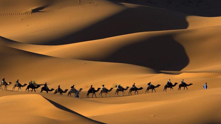deserts camels Morocco sahara 768x432