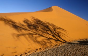 deserts shadows Namibia Africa 340x220