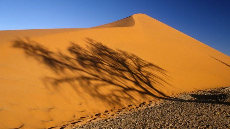 deserts shadows Namibia Africa 768x432
