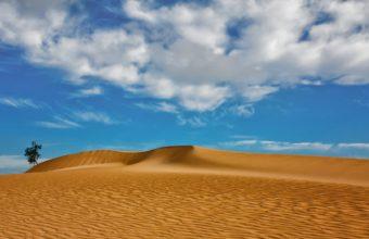 dunes sand clouds tree 340x220