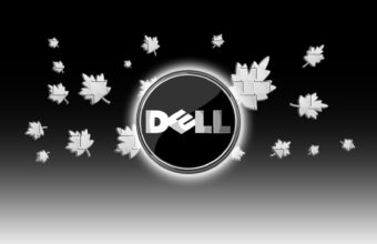 Dell Wallpapers 25 1920 x 1080 340x220