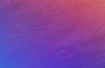 Meizu M2 Stock Wallpapers 18 1080 x 1920 340x220