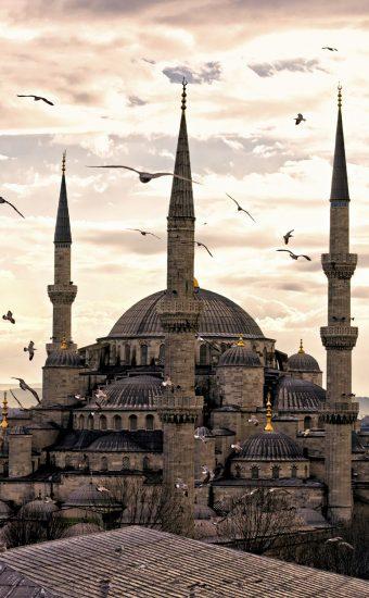 Mosque Wallpaper [1440x2560] - 002