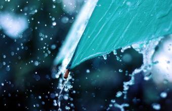 Rain Wallpapers 17 2560 x 1600 340x220