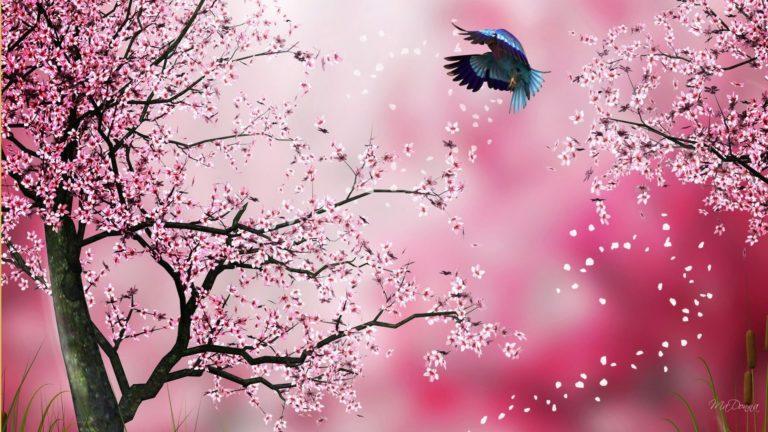 Sakura Wallpaper 6 1920x1080 768x432
