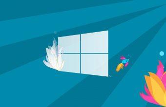 Windows 10 Wallpaper 71 1280x800 340x220