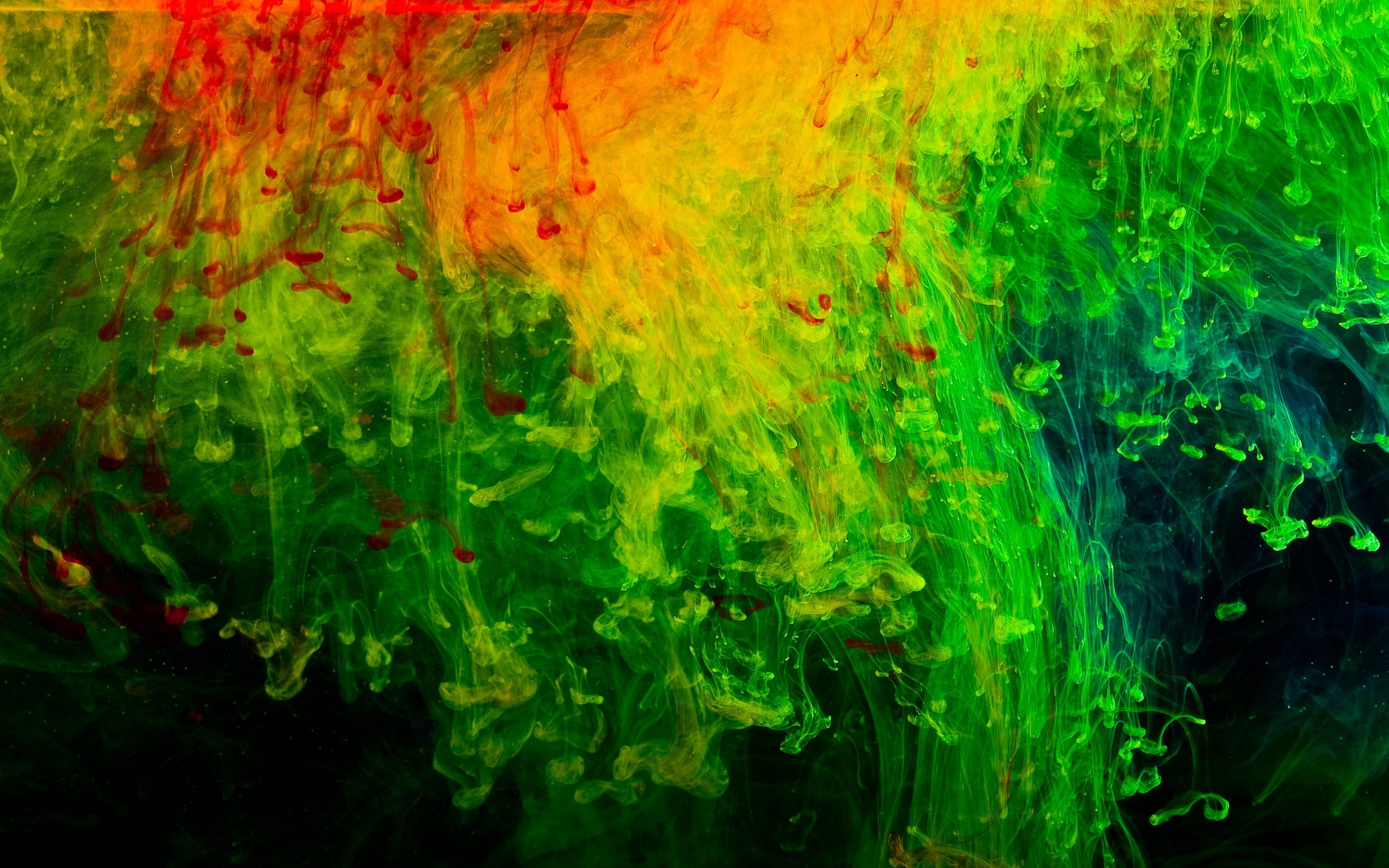 Abstraction Red Green Black Texture 2880 X 1800