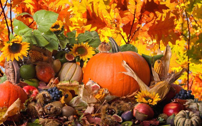 Autumn Harvest Vegetables Fruits 2560 X 1600 768x480