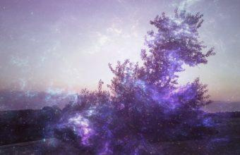 Background Light Spot 2560 X 1440 340x220
