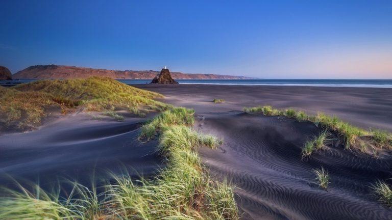 Beaches Grass Sand Ocean Sea 1920 x 1080 768x432