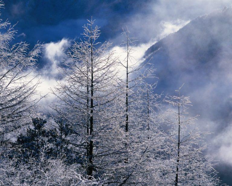 Beautiful Winter Landscapes 1280 x 1024 768x614