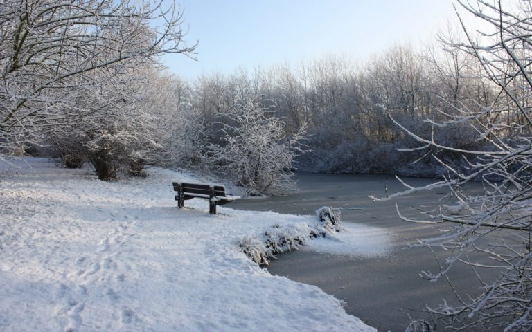 Bench Winter Snow 1440 x 900 768x480