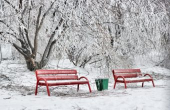 Benches Winter Hoarfrost 1440 X 900 340x220