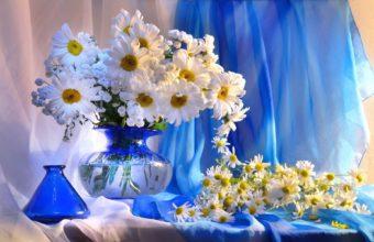 Daisy Vase Flowers 1920 x 1200 340x220