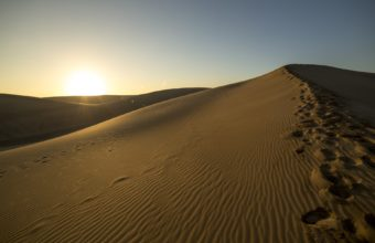 Desert Sunlight Sunset 1920 x 1200 340x220