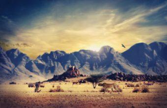 Deserts Wastelands 2560 x 1600 340x220