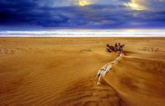 Dry Beach Sand 1920 x 1200 340x220