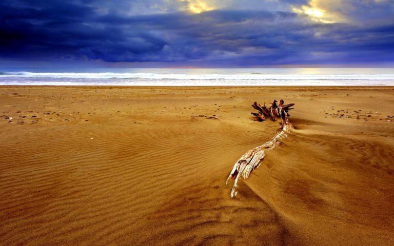 Dry Beach Sand 1920 x 1200 768x480