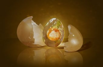 Egg Shell Shape 1440 x 900 340x220