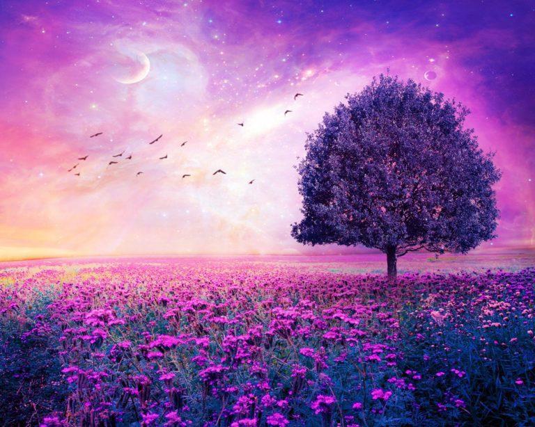 Field Tree 3d Art Stars Bokeh Sky Flowers 3000 x 2400 768x614
