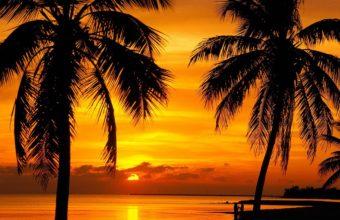 Florida Key Sunset Beach 4000 x 2250 340x220