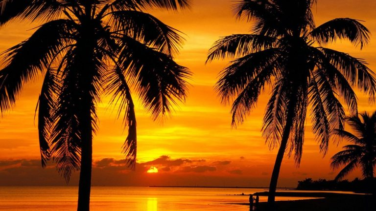 Florida Key Sunset Beach 4000 x 2250 768x432