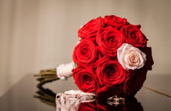 Flowers Red Rings Roses Bouquet Wallpaper 2048 x 1331 340x220