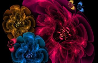 Flowers Veil Background 2560 X 1600 340x220