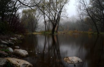 Fog Forest Lake Autumn Stones 2048 X 1356 340x220