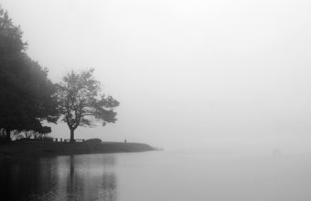Fog Wallpapers 02 1024 x 682 340x220