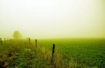 Fog Wallpapers 12 1920 x 1200 340x220