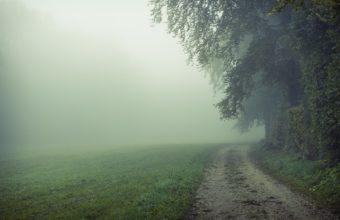 Fog Wallpapers 23 2560 x 1600 340x220