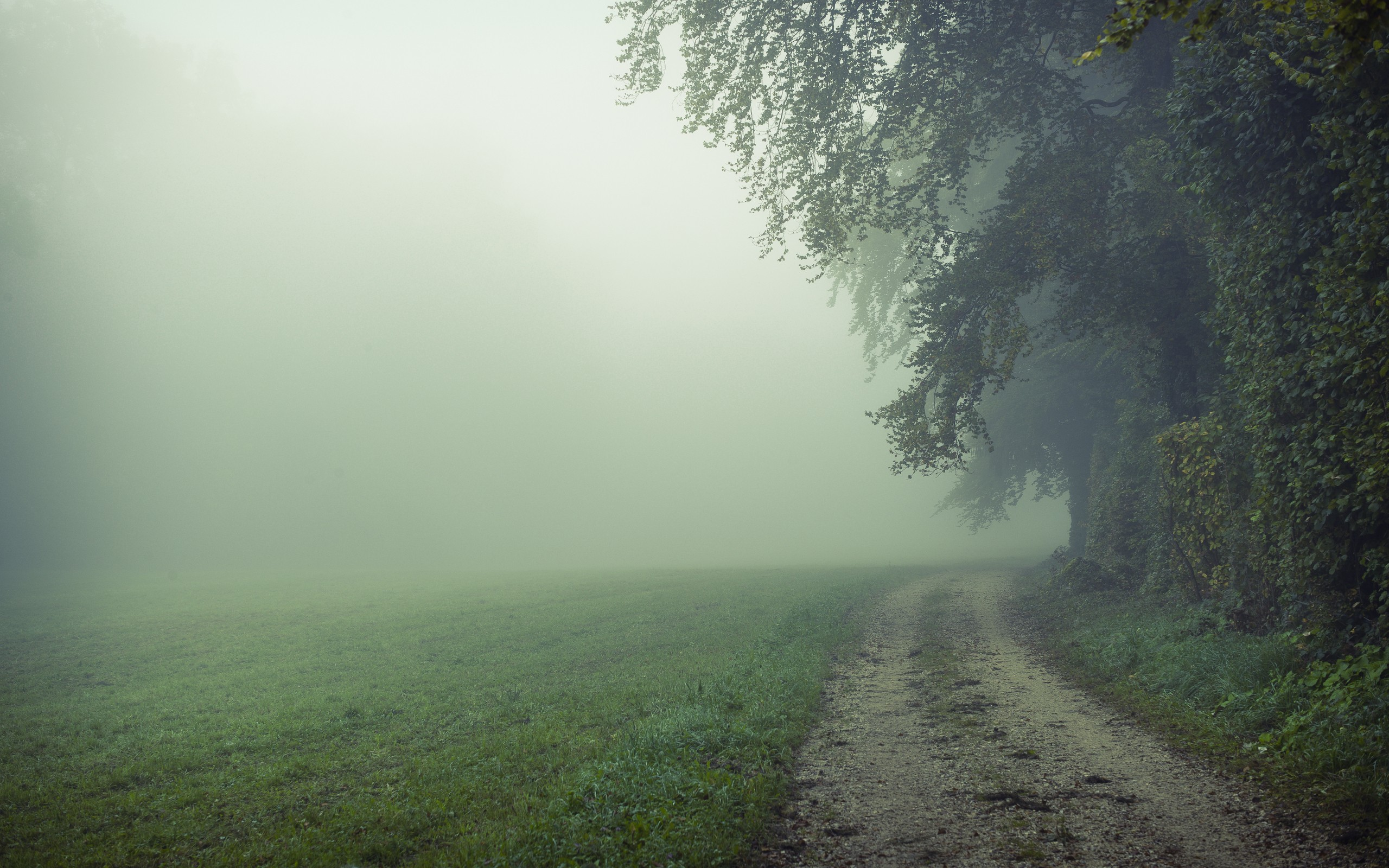 Fog Wallpapers 23